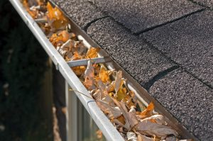 Gutters with leaves in them